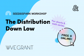 Shorts Distribution Down Low