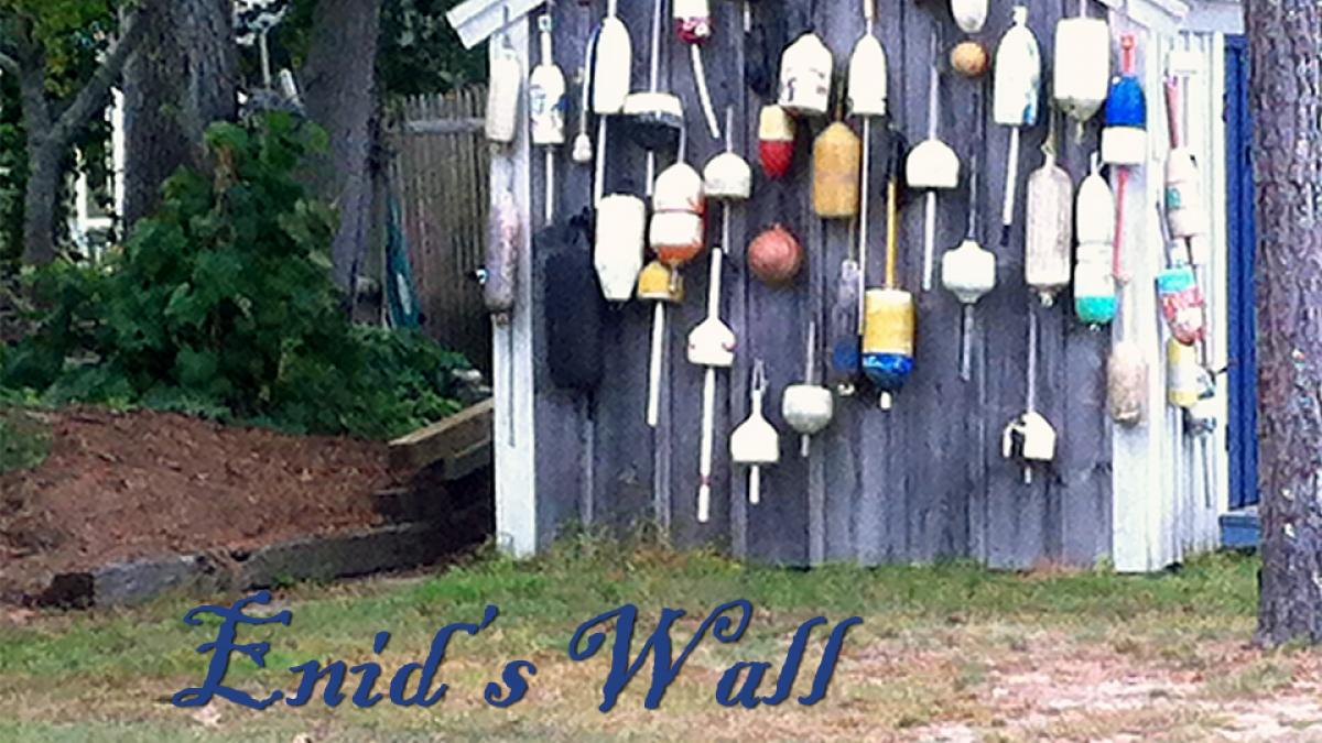 Enid's Wall