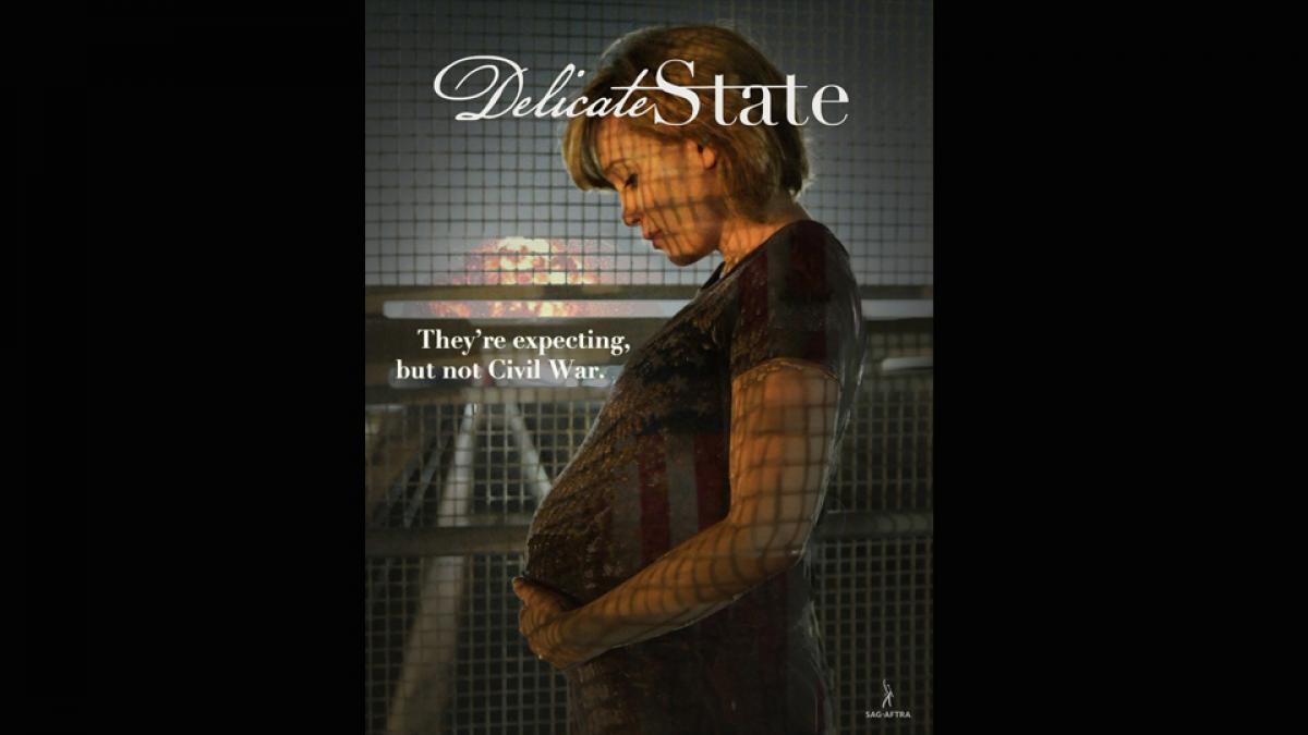 Delicate State - Finishing Funds